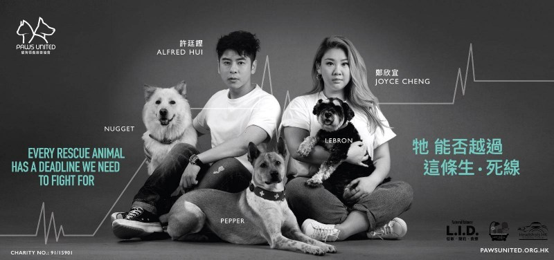 Paws United Charity MTR ad